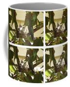 Hummingbird Mother Feeding Her Two Babies Coffee Mug