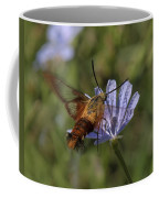 Hummingbird Or Clearwing Moth Din137 Coffee Mug