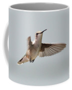 Hummingbird With Tongue Out Coffee Mug