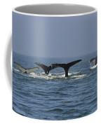Humpback Flukes Coffee Mug
