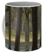 Hurricane Creek Coffee Mug