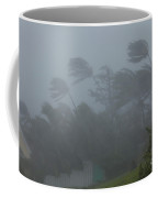 Hurricane Irene Coffee Mug