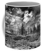 Hurricane Isaac Clouds Coffee Mug