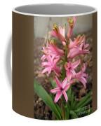 Hyacinth Named Pink Pearl Coffee Mug
