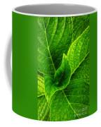 Hydrangea Leaves Coffee Mug