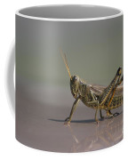 I Am Sexy And I Know It Coffee Mug