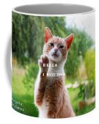 I Want Food Cat Coffee Mug