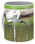 Ibis In Flight Coffee Mug