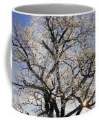 Ice Covered Tree At Sunrise Coffee Mug