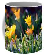 Ice Plant Coffee Mug by Henrik Lehnerer
