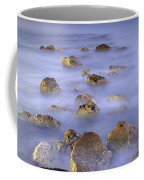 Icebers Coffee Mug