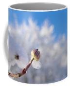 Iced Dogwood Coffee Mug