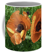 Iceland Poppies Coffee Mug