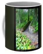 Ichetucknee Stairway Coffee Mug