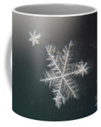 Icy Coffee Mug