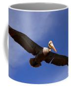 In Flight Pelican Coffee Mug