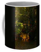 In Golden Moments Of Reflection Coffee Mug