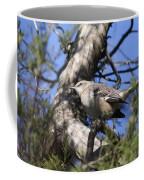 In The Cedar Coffee Mug