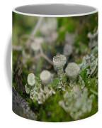 In The Land Of Little Mushrooms  Coffee Mug