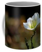 In The Spot Light Coffee Mug