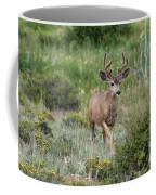 In Velvet Coffee Mug