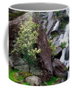 Inchquinn Waterfall, Beara Peninsula Coffee Mug