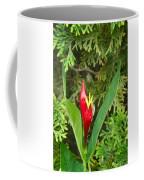 Indian Pink 2 Coffee Mug