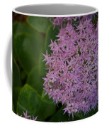 Inner White Coffee Mug