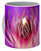 Inside Of A Flower Coffee Mug
