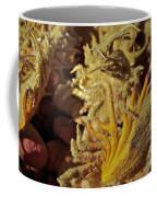 Inside The Sago Palm Coffee Mug