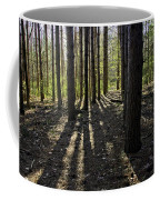 Into The Woods Spnc Michigan Coffee Mug