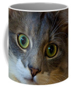 Intrigue Coffee Mug