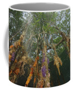 Invertebrate Life Growing On The Roots Coffee Mug by Tim Laman