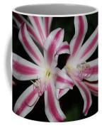 Inviting Lily Coffee Mug