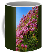 Ireland Close-up Of Seapink Wildflowers Coffee Mug
