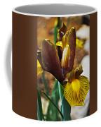Iris After The Rain Coffee Mug