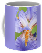 Iris Close Up Blue And Gold Coffee Mug