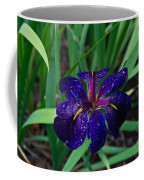 Iris With Rain Drops Coffee Mug