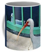 Ivis Ibis And Packy Coffee Mug
