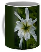 Ivory Star Coffee Mug