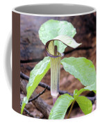 Jack-in-the-pulpit Coffee Mug