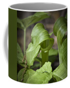 Jack In The Pulpit Coffee Mug
