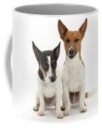 Jack Russell Terrier Dog, Rockie Coffee Mug