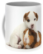 Jack Russell Terrier Puppy And Guinea Coffee Mug