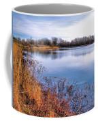 January Bass Pond 2 2012 Coffee Mug