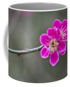 Japanese Flowering Apricot. Coffee Mug