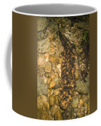 Japanese Giant Salamander Coffee Mug