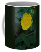 Japanese Coffee Mug