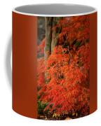 Japanese Maple In Autumn Coffee Mug