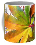 Japanese Maple Leaves 7 In The Fall Coffee Mug